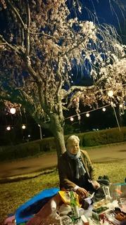 2019年4月22日夜桜榴ヶ岡公園龍神様と共に3.JPG
