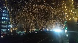 2019年12月11日仙台光のページェント3.jpg